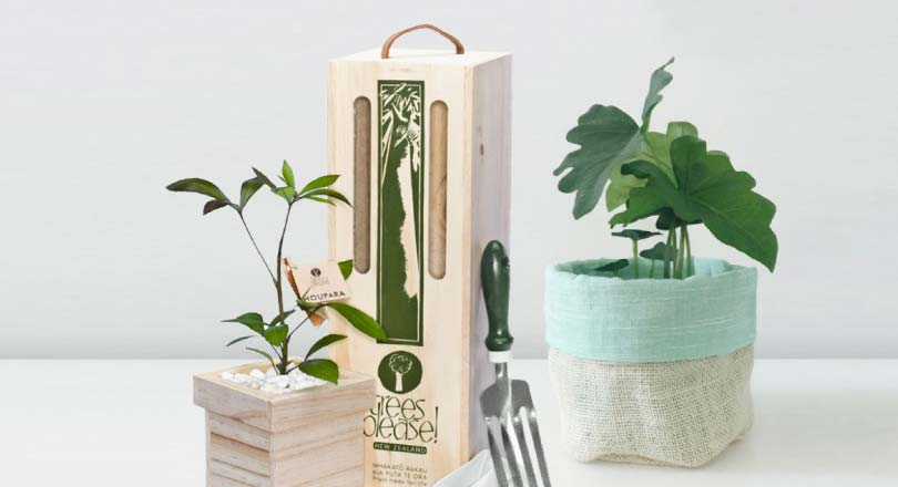 Trees please tree gifts delivered in new zealand celebrating our 21st birthday negle Choice Image