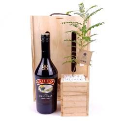 Baileys Tree Gift image