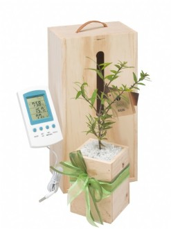 weather station gift set image